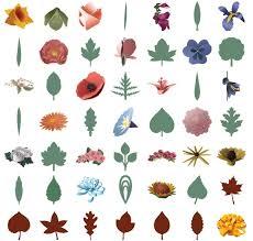 3d Home Design Kit 3d Floral Home Decor Cricut Cartridge Craftdirect Com