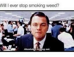 Leonardo Dicaprio Memes - leonardo dicaprio weed memes weed memes