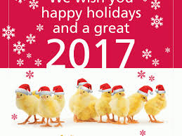 we wish you happy holidays and a great 2017