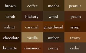 brown paint the color thesaurus brown writer and brown coffee