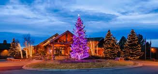 fort collins christmas lights custom christmas lighting and decor for fort collins greeley