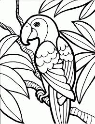 colouring pages free printable bird coloring pages in painting