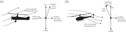 dynamics of a rotor in autorotation philosophical transactions