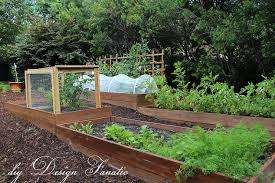 raised bed gardening hometalk