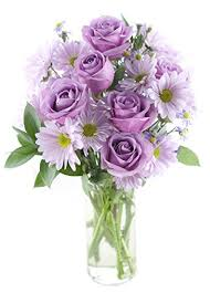 purple roses purple bouquet 6 purple roses 6 purple