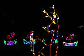 henry vilas zoo christmas lights catching up zoo lights a major success local news host madison com