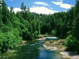 Oregon rivers images 120 best oregon lakes rivers images central jpg