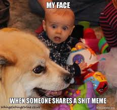 Wtf Is This Shit Meme - shit parenting memes a compilation of the worst of the web