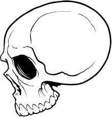 simple cute skull drawing google search drawing to emulate