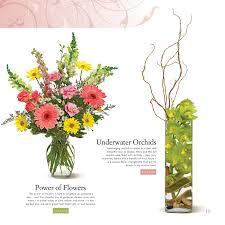 floral selection guide u2014 linda frost u0026 associates