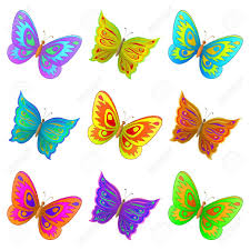 clipart butterflies in color collection
