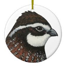 bobwhite quail ornaments keepsake ornaments zazzle
