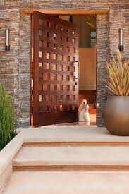 Modern Front Door Modern Front Door Designs Main Gate For Home Incredible House Plan