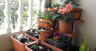 beautiful balcony gardens beautiful balcony garden design ideas