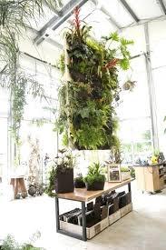indoor wall garden diy looking for a living wall or vertical