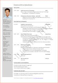 Resume Format Pdf For Civil Engineering by Resume Blank Format Pdf Resume For Your Job Application