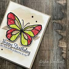 beautiful day butterfly left jusify stin hoot