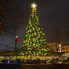 tree lighting program rescheduled city of kennesaw