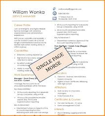 5 1 page resume samples cashier resumes