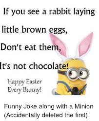 Chocolate Bunny Meme - if you see a rabbit laying little brown eggs don t eat them it s not