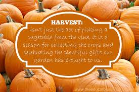 harvest preschool activities a social studies lesson