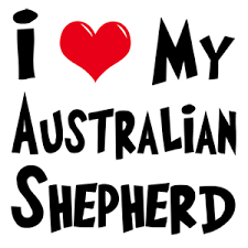australian shepherd gifts australian shepherd gifts gifts for dog lovers my dog rulez