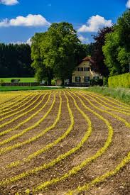 thanksgiving point farm country 310 best farm scenes images on pinterest country roads country