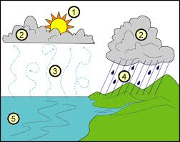 reading comprehension the water cycle