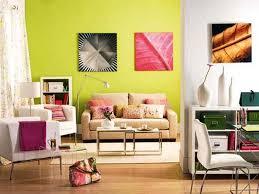 Home Interior Decoration Accessories Contemporary Home Decor Contemporary Style Decorating Ideas Pictures