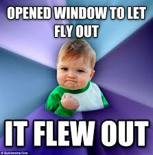 Fly Out Memes - opened window to let fly out it flew out meme boomsbeat