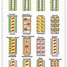 maintaining a garden vegetable gardening for beginners full image