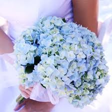 blue flowers for wedding light blue wedding flower ideas ipunya