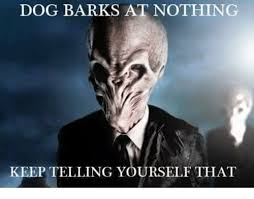 Dog Barking Meme - dog barks at nothing keep telling y rself that dogs meme on me me