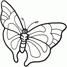 butterfly u2013 alcatix com