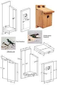 How To Make House Plans Swallow Bird House Gardening Pinterest Swallow Bird Bird