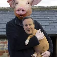 David Cameron Meme - why are david cameron peppa pig gifs so popular quora