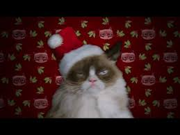 Tard The Grumpy Cat Meme - grumpy cat s worst christmas ever tv movie 2014 imdb