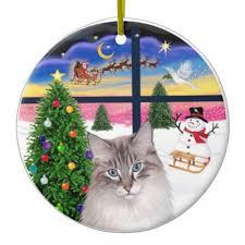 ragdoll cat ornament zazzle