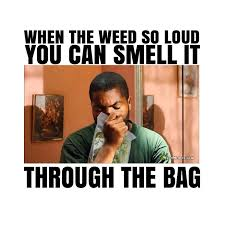 Ice Cube Meme - loud weed smell through the bag ice cube 420 weed memes