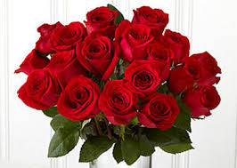 flower gift flowers for christmas here are some tips for giving flowers or