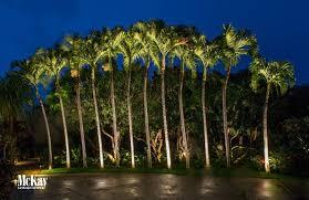 Spotlight Landscape Lighting Project Spotlight Tropical Outdoor Lighting In