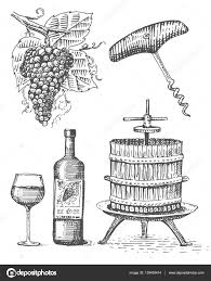 press for grapes sketch corkscrew wine bottle and glass in vintage