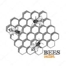 bee coloring pages bumble bee coloring page coloring pages
