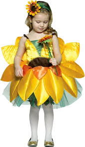 candy fairy halloween costume 34 best halloween costume ideas images on pinterest costumes