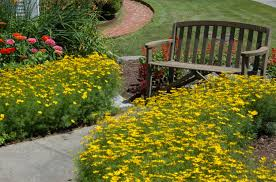 Landscaping by What Is Landscaping