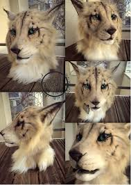 mask for sale khajiit mask for sale by inerricreatures on deviantart
