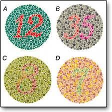 Color Blind Picture Test Color Blindness