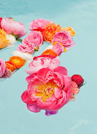 floating flowers floating flower diy how to create a diy flower message that also
