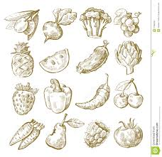 hand draw fruit and vegetable stock vector image 31380365