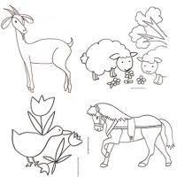 Coloriage animaux  Des coloriages sur les animaux à imprimer